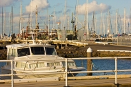 Pleasure launch near Royal Geelong Yacht Club